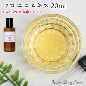 マロニエエキス 20ml (メール便選択可)|naturalcosmetic
