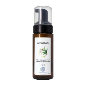 月桃 フェイシャル泡ソープ 160ml 自然化粧品研究所|naturalcosmetic