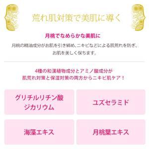 月桃 フェイシャル泡ソープ 160ml 自然化粧品研究所 naturalcosmetic 03
