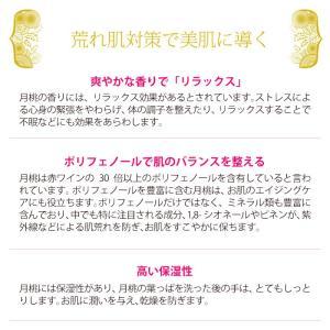 月桃 フェイシャル泡ソープ 160ml 自然化粧品研究所 naturalcosmetic 04