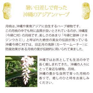 月桃 フェイシャル泡ソープ 160ml 自然化粧品研究所 naturalcosmetic 05