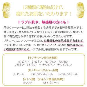 月桃 フェイシャル泡ソープ 160ml 自然化粧品研究所 naturalcosmetic 06