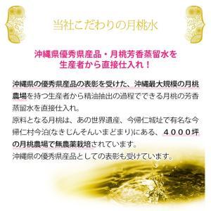 月桃 フェイシャル泡ソープ 160ml 自然化粧品研究所 naturalcosmetic 07