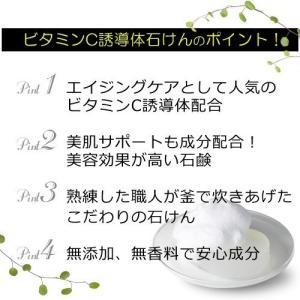 ビタミンC誘導体石けん (棒状/約870g) (ポスト投函不可)|naturalcosmetic|03