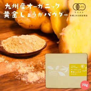 黄金しょうが パウダー 70g 鹿児島県産 オーガニック 国産 有機 黄金生姜 粉末