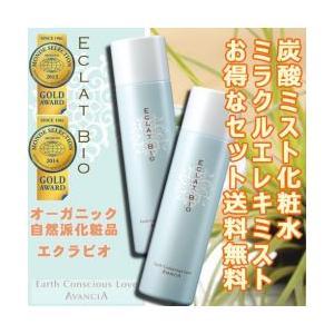送料無料 高濃度炭酸ミスト化粧水『ミラクルエレキミスト』2本セット naturalweb-dec