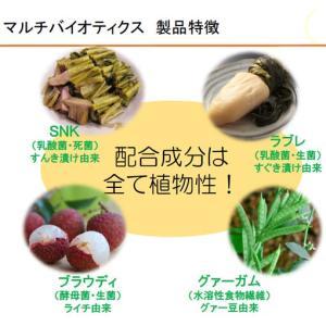 日本の植物乳酸菌サプリメント 『マルチバイオティクス』 送料無料 ニューサイエンス|naturalweb-dec|02