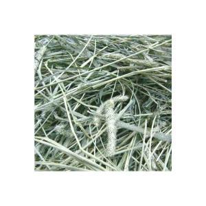 アメリカ産一番刈りチモシーシングルプレス 3kg うさぎ、モルモット、チンチラ、テグーに