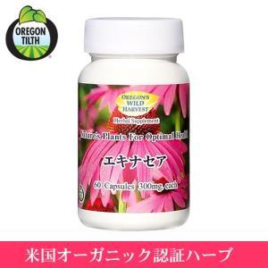 【新デザイン】 エキナセア  60粒 ( Echinacea )(オレゴンズワイルドハーベスト) |natures