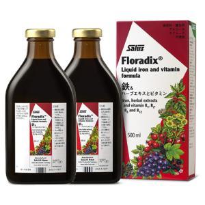 フローラディクス 500ml×2本セット Floradix 鉄分補給飲料 |natures