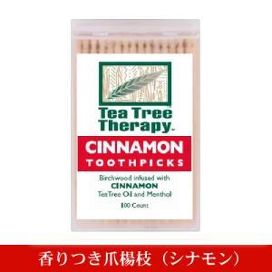 香りつき爪楊枝 100本入り(シナモン) (クーポン利用可)|natures