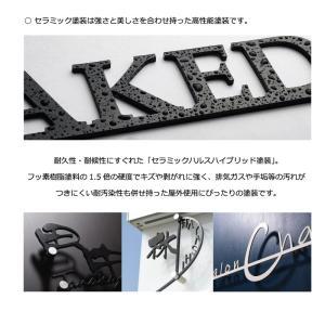 表札「ALC」 すっきりとしたピンタイプ ステンレス製|naturulu|06