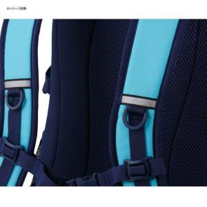 デイパック・バックパック コールマン(Coleman) ウォーカー25/WALKER25 25L ブラック|naturum-od|08