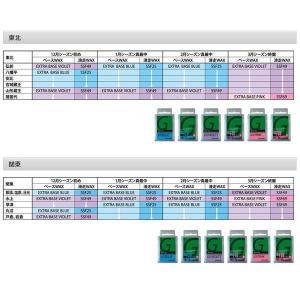外遊びグッズ ガリウム EXTRA BASE ワックス SW2078 -12度から-3度 全雪質 200g BLUE|naturum-outdoor|03