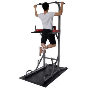 トレーニング器具 SINTEX 懸垂マシンIII 単品