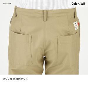 アウトドアパンツ ヘリーハンセン HOE21754 Anti Flame Pants(アンチ フレイム パンツ) M WR(ウェットロープ) naturum-outdoor 06