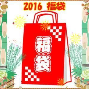 ジャケット(レディース) アクシーズクイン 2016年 AXESQUIN(アクシーズクイン)福袋 レディース L