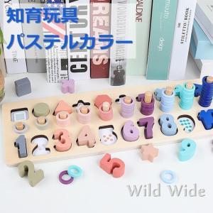 知育玩具 ゲームボード パステルカラー 数字 計算 色 モンテッソーリ教具 木製おもちゃ 誕生日プレゼント 出産祝い 送料無料|natyunal-shop