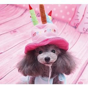 愛犬用 帽子 ピンク バースディー 誕生日に(小型〜中型犬用)|ndhci2014