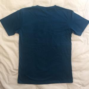 デザインTシャツ レゴの人間で表現したダーウィンの進化論Tシャツ!レゴ好きにはたまらないパロディーT!|neigh|05