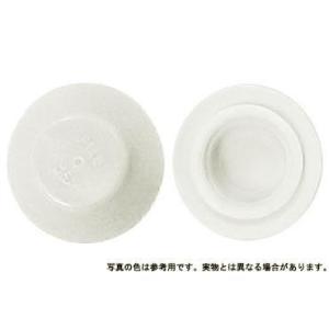 カラ−キャップHEX 薄い白 M5 樹脂  【500本】|nejikuru