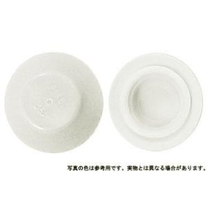 カラ−キャップHEX 薄い白 M6 樹脂  【400本】|nejikuru