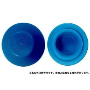 カラ−キャップHEX ブル− M6 樹脂  【400本】|nejikuru