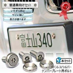 ナンバープレート用ボルト ピン・トルクスサラ ステンレス(シルバー) 3本 [ボルト・ワッシャーのみ]|nejiya