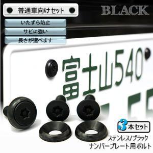 ナンバープレート用ボルト ピン・トルクスサラ ステンレス(ブラック) 3本 [ボルト・ワッシャーのみ]|nejiya