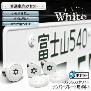 ナンバープレート用ボルト ピン・トルクスサラ ステンレス(ホワイト) 3本 [ボルト・ワッシャーのみ]|nejiya