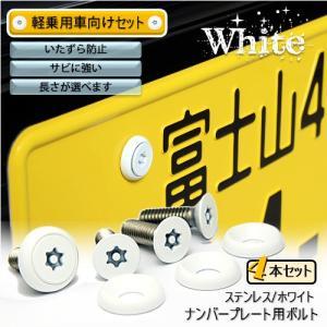 ナンバープレート用ボルト ピン・トルクスサラ ステンレス(ホワイト) 4本 [ボルト・ワッシャーのみ]|nejiya