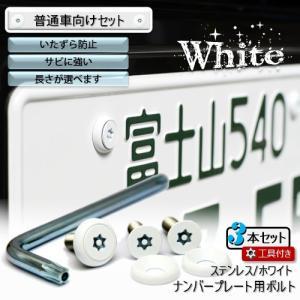ナンバープレート用ボルト ピン・トルクスサラ ステンレス(ホワイト) 3本 + 工具付セット|nejiya