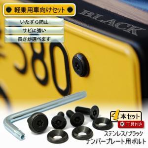 ナンバープレート用ボルト ピン・トルクスサラ ステンレス(ブラック) 4本 + 工具付セット|nejiya