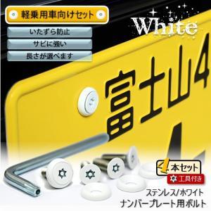 ナンバープレート用ボルト ピン・トルクスサラ ステンレス(ホワイト) 4本 + 工具付セット|nejiya