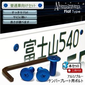 ナンバープレート用ボルト フラットタイプ アルミ(ブルー) 3本 + 工具付セット|nejiya