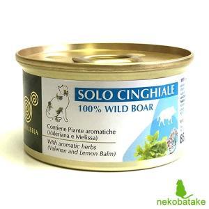 エクイリブリア キャット 缶 イノシシ&ハーブ 85g / EQUILIBRIA 猫用缶詰 一般健康食|nekobatake