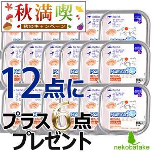FORZA10 リナール アクティウェット フラットフィッシュ 100g / 12+6セット キャンペーン 数量限定|nekobatake