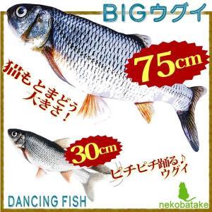 BIG!ダンシング! GyoGyo セット / 猫用おもちゃ 貝沼産業 nekobatake