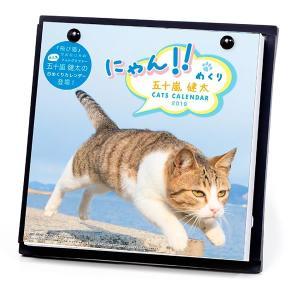 2019年 ニャン!!めくり / 五十嵐健太 / スタンド付 カレンダー 猫 日めくり 卓上|nekobatake