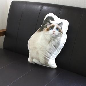 アンダロ ラグドール キャット 猫柄クッション|nekokin