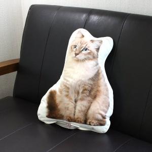 アンダロ シベリアン キャット 猫柄クッション|nekokin