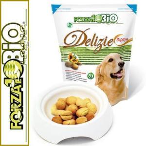 最短賞味2020.7・フォルツァ10 犬用 オーガニックフルーツビスケット パパイヤ味300g正規品|nekokin