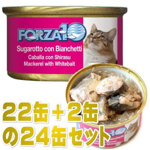 最短賞味2022.2・フォルツァ10 猫 メンテナンス サバ&シラス 85g×24缶 ウェット キャットフード FORZA10正規品fo05609s24 nekokin