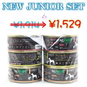 SALE/最短賞味2023.5・ニュートライプ 新ジュニア95g缶×6缶アソートセット子犬用nud13750s|nekokin