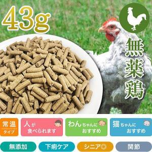 最短賞味2020.1・プライムケイズ 長寿一番 無薬鶏 43g 全年齢対応 産地厳選 国産 無添加ごはん さかい企画 Prime KS pr01190|nekokin