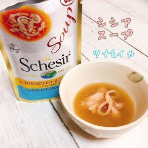 SALE/最短賞味2022.3・シシア 猫 スープ(ツナ&イカ)85g scc673パウチ 成猫用ウェット一般食 キャットフードSchesir正規品|nekokin
