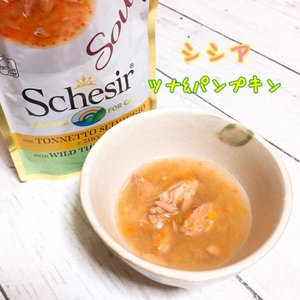 SALE/最短賞味2022.6・シシア 猫 スープ(ツナ&パンプキン)85g scc674パウチ 成猫用ウェット一般食 キャットフード Schesir 正規品|nekokin