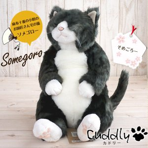 Cuddly(カドリー) 猫のぬいぐるみ ソメゴロー 猫グッズ 猫雑貨 猫 ぬいぐるみ リアル 癒し...