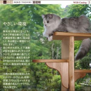 小さいキャットツリーひぐらし 支柱1本タイプ nekoyashiki-shop 03
