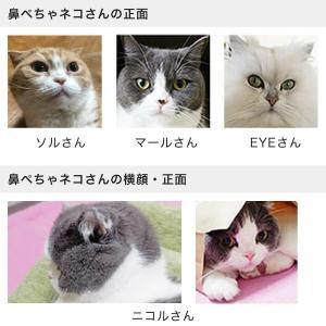 爪切り補助具 もふもふマスク 猫 マスク|nekozuki|05